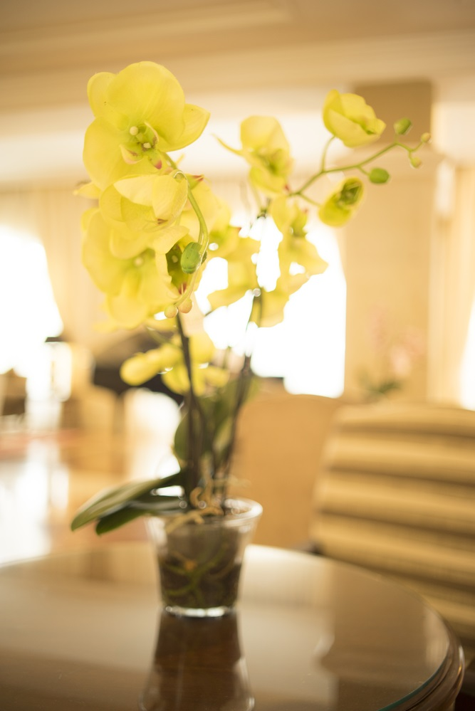 yellow orchids on lobby table